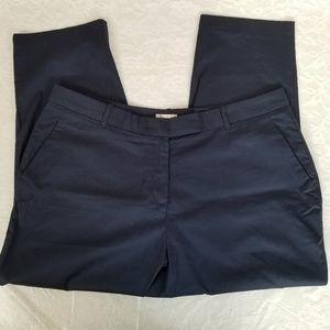Avenue Women's 18 Straight Leg Dress Pants